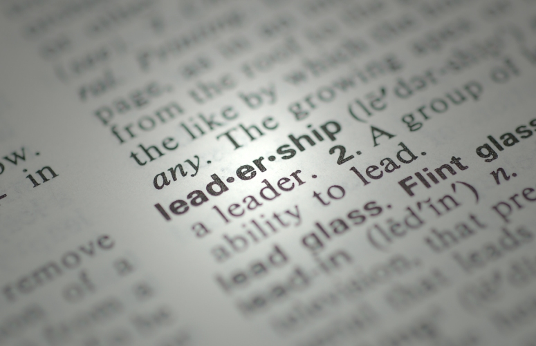New Republicans, are you ready to lead?